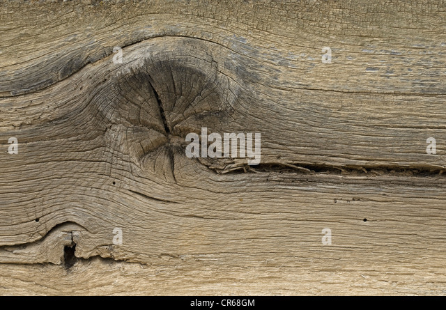 Wooden board, detailed view of a knothole with cracks - Stock Image