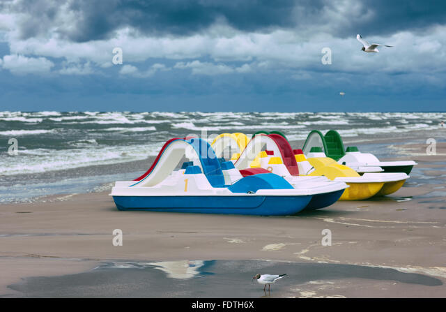 Seagull caught fish on the beach on a background of linked walking water bikes during a storm on the Baltic sea - Stock Image