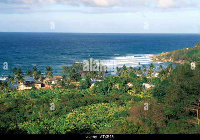 Barbados West Indies Caribbean Atlantic Coast homes palm trees ocean - Stock Image