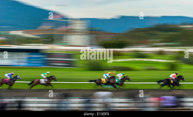 Horse racing at Hastings Park, Vancouver, British Columbia, Canada - Stock Image