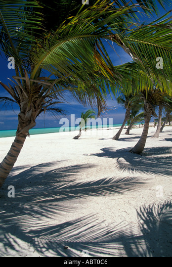 BEACHES Dominican Republic Playa Juanillio - Stock Image