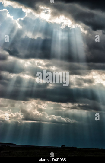 Beams of sunlight coming through storm clouds in the Masai Mara, Kenya, Africa - Stock Image
