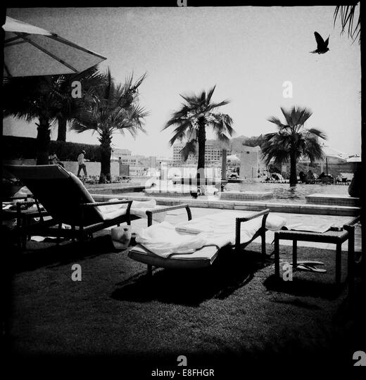 United Arab Emirates, Abu Dhabi, Pool scene with bird - Stock Image