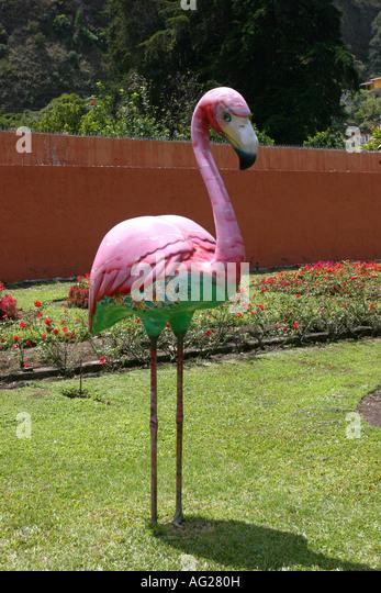 Flamingo statue stock photos flamingo statue stock for 146 garden pond drive lexington sc