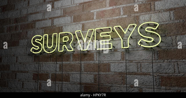 SURVEYS - Glowing Neon Sign on stonework wall - 3D rendered royalty free stock illustration.  Can be used for online - Stock Image