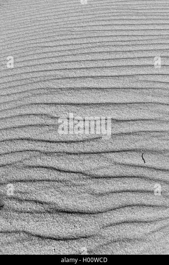 Beach sand surface texture. Natural backgrounds and textures - Stock Image