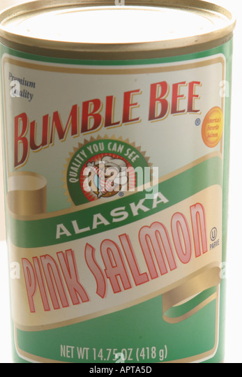 can canned Alaska pink salmon label Bumble Bee brand - Stock Image