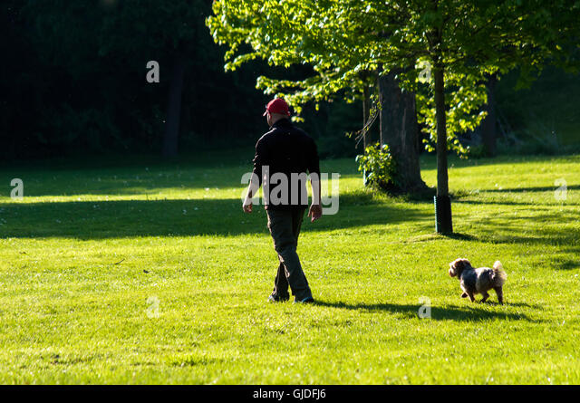 Scarborough Ontario Dog Park