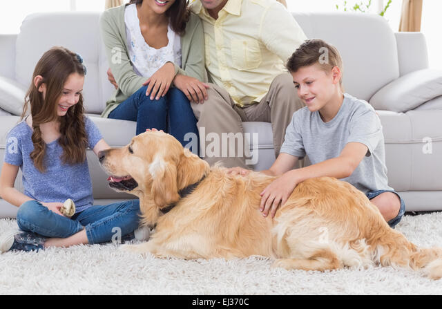 stroking the family
