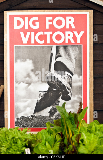 'Dig for Victory' Poster - Stock Image
