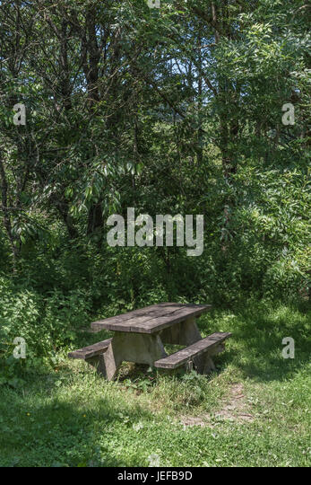 Woodland picnic table available for public use - seen at Lostwithiel, Cornwall. - Stock Image