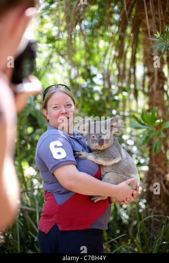 Tourist holding a koala at Bungalow Bay Koala Village Horseshoe Bay northcoast of Magnetic island Great Barrier - Stock Image