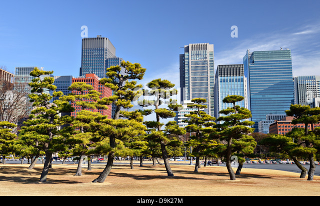 Tokyo, Japan's Marunouchi Business District viewed from the grounds of Tokyo Imperial Palace. - Stock-Bilder