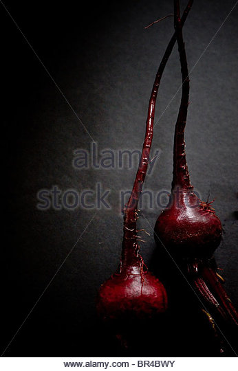 Close-up of two beet roots in Decatur, Georgia. - Stock-Bilder