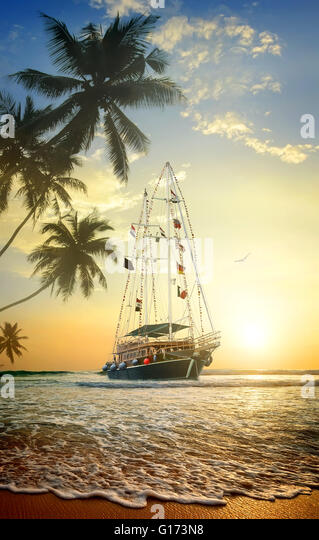 Beautiful ship in ocean near coast with palm trees - Stock Image
