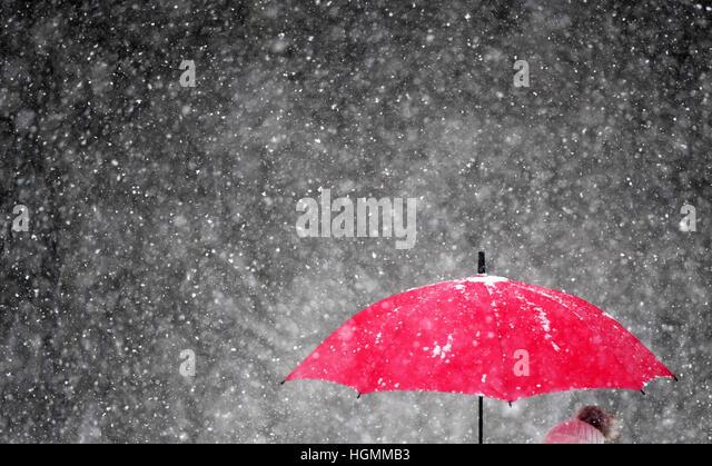 Potsdam, Germany. 11th Jan, 2017. A pedestrain walks through heavy snowfall with a bright red umbrella near Potsdam, - Stock Image