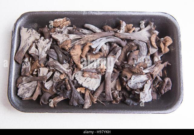 Black polythene tray full of Horn of Plenty mushrooms. Isolated - Stock Image