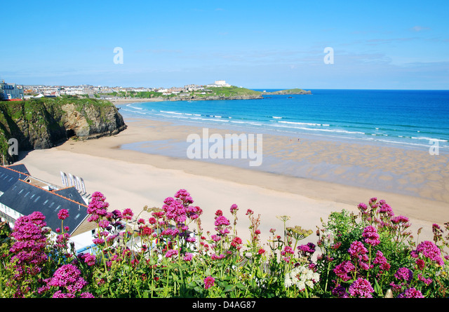 Tolcarne beach, Newquay, Cornwall, England, UK - Stock Image