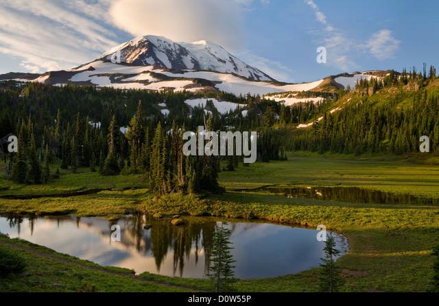 mount adams wilderness volcano stock photos mount adams. Black Bedroom Furniture Sets. Home Design Ideas