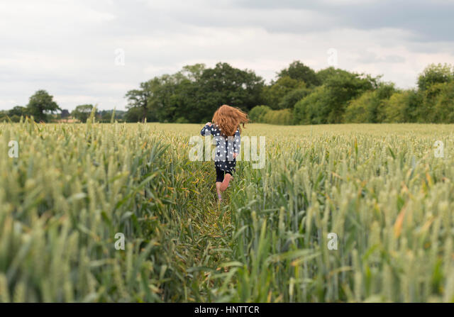 A little girl with red hair running through a wheat field. - Stock Image