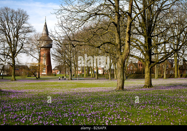 blossom in schleswig holstein germany stock photos blossom in schleswig holstein germany stock. Black Bedroom Furniture Sets. Home Design Ideas