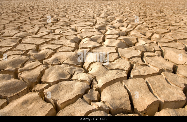 cracked soil pattern in the Zin valley, Arava, Israel. - Stock Image