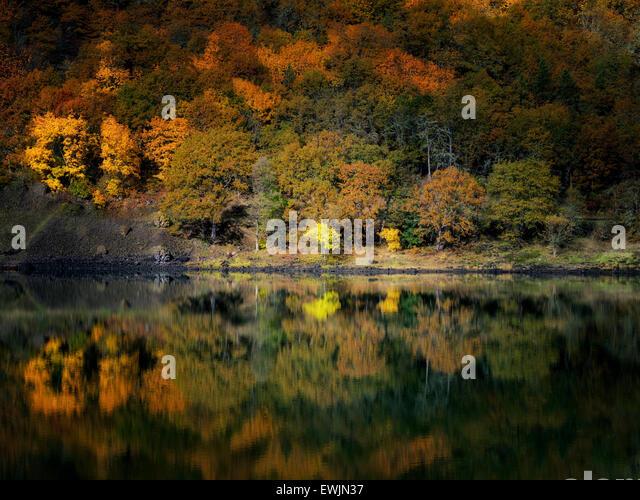 Small lake and fall color reflection near the Columbia River. Columbia River National Scenic Area, Washington - Stock Image
