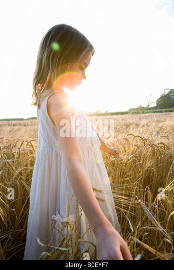 Girl walking in corn field, lens flare - Stock Image