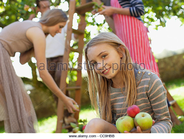 Portrait of smiling girl holding apples in orchard - Stock Image