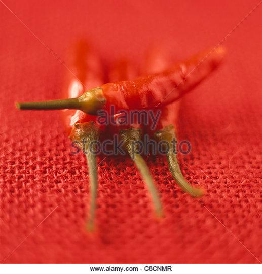 Red hot peppers - Stock-Bilder