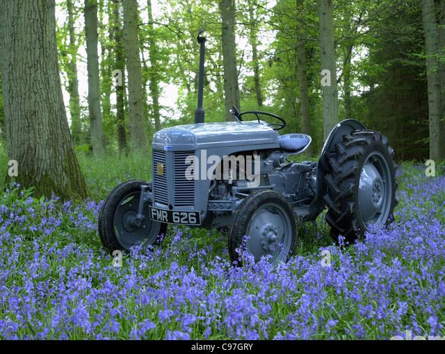 Vintage Ferguson tractor TEA20 1956 - Stock Image
