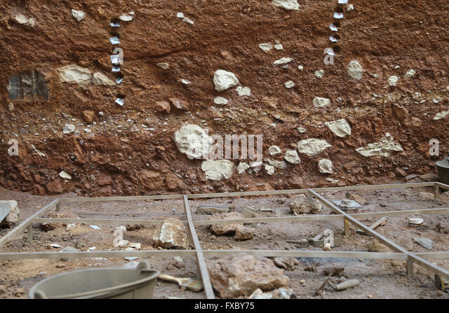Archaeological excavation. Study materials remains. Stratigraphy. Atapuerca. Burgos. Spain. - Stock Image