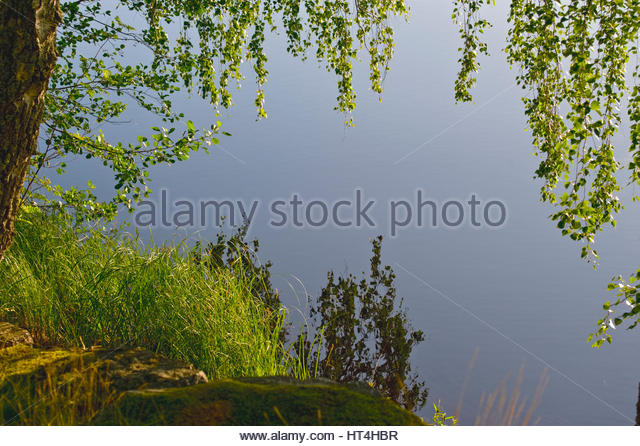 Blue lake framed by lush green tree and grass, Sunny day. - Stock Image