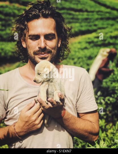 With puppy in tea plantation - Stock-Bilder