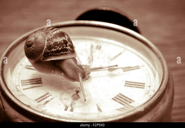 a land snail on an old desktop clock, in sepia tone - Stock Image