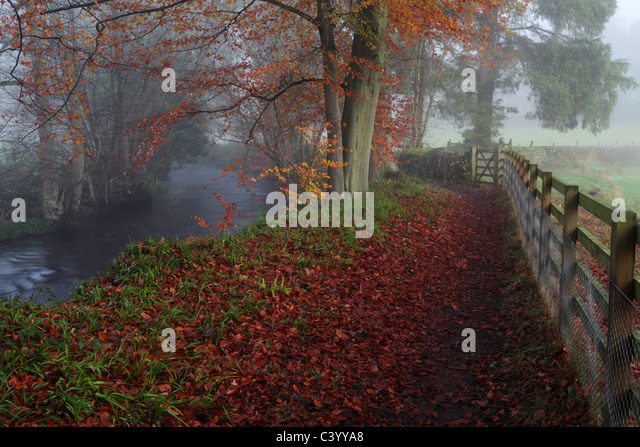 Misty autumn morning walking along the River Washburn near Blubberhouses in Yorkshire, England - Stock Image