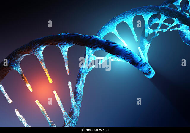 Conceptual image of human DNA illustrating targeted alteration, manipulation or modification. 3D rendering artwork - Stock Image