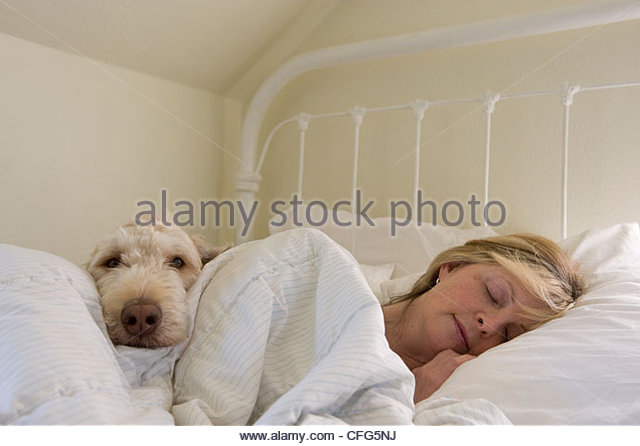 A woman lies in bed with her dog at their home in Lincoln, Nebraska. - Stock-Bilder