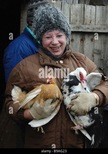 An initial batch of bird flu vaccine has reached the Leningrad Region Private farms neighboring on industrial scale - Stock Image
