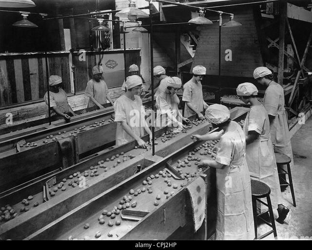 Workers while sorting walnuts, 1926 - Stock-Bilder
