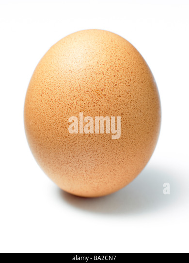 Studio Shot Of An Egg - Stock Image