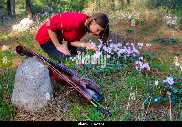 Girl has put violin and collects flowers. Little depth of field - Stock-Bilder