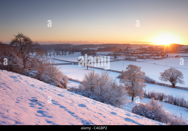 frost and snow on the trees on East Hill overlooking  Milborne Port, Somerset, England - Stock Image