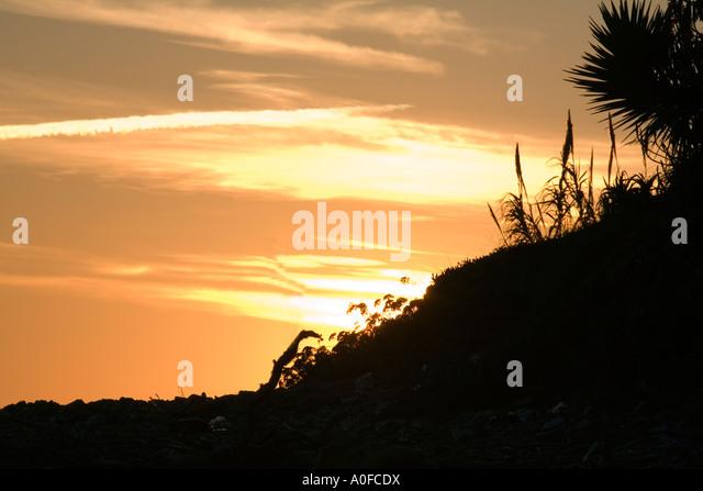 Mediterranean sunset Mediterranean sunset palm fond dusk - Stock Image