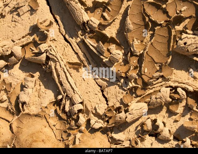 Extreme drought stock photos extreme drought stock for Soil king extreme