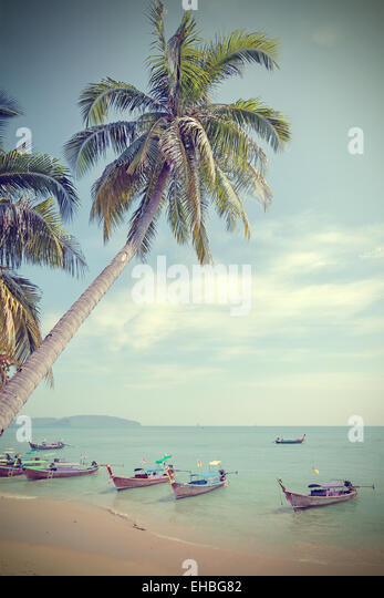 Vintage toned palm trees on a beach, summer background. - Stock-Bilder