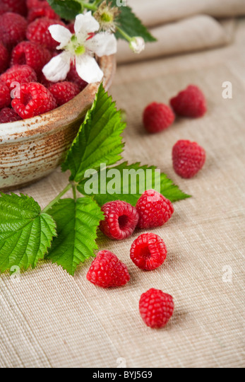 Agriculture - Red raspberries in a bowl and on a mat with leaves and a blossom. - Stock-Bilder