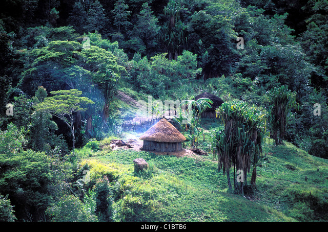 Indonesia, Papua, Irian Jaya, Baliem valley, Wamena area - Stock Image
