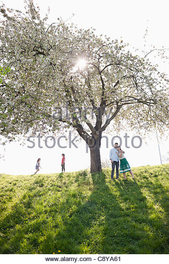 Family playing under tree outdoors - Stock Image
