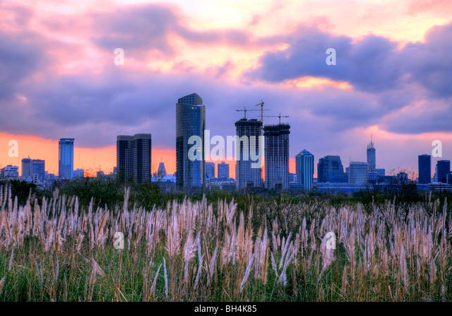 Ecological reservation Park, by River Plate (Rio de la Plata). 'Costanera Sur'. Buenos Aires, Argentina, - Stock Image